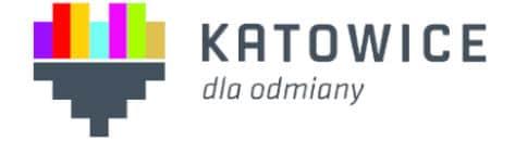 Urząd Miasta Katowice - współpraca w zakresie relizacji pokazu pirotechnicznego